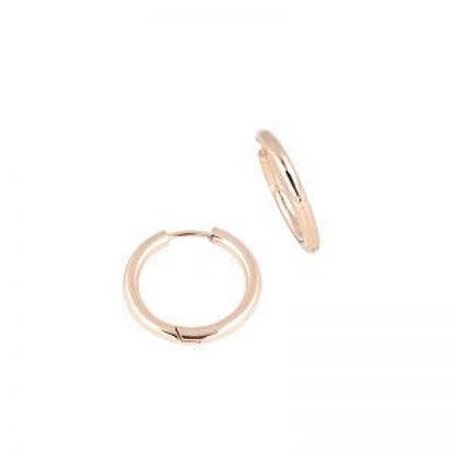Image de Boucles d'oreilles en acier inoxydable or rose de la Collection L'Aventurine